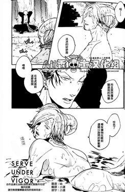 Free Hentai Doujinshi Gallery: (kyouguraya / Kunoichi)  SERVE UNDER VIGOR (One Piece) [Chinese]