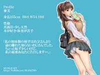 Free Hentai Artist CG Set Gallery: [REDLIGHT] 痴漢ダメ絶対。完全版