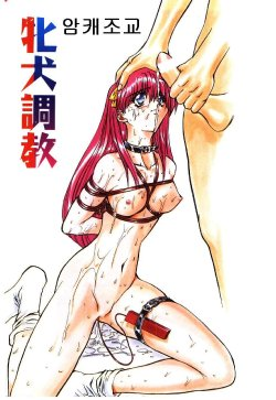Free Hentai Manga Gallery: bitch training