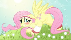 Free Hentai Western Gallery: My Little Pony - Fluttershy