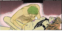 Free Hentai Image Set Gallery: Zoro x Nami (One Piece)