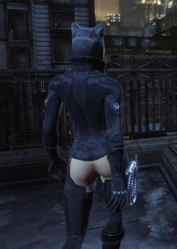 Free Hentai Misc Gallery: Batman Arkham City Catwoman Nude