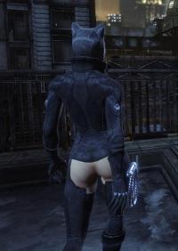 Free Hentai Misc Gallery: Batman Arkham City Catwoman Nude