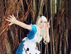Cosplayer: Pinkie Bunny - Alice (Alice in Wonderland)