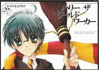 (M4Y) Harry the World Worker (Harry Potter) [English]