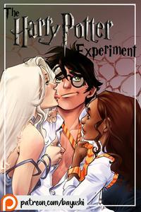 Bayushi - The Harry Potter Experiment